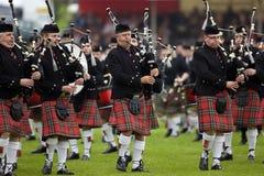Pijpers in Cowal die zich in Schotland verzamelt stock afbeeldingen