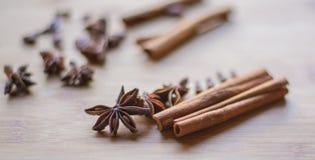 Pijpje kaneel en anijsplant op macrofoto stock afbeeldingen