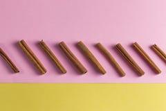 Pijpjes kaneel in een rij worden gesorteerd die stock fotografie