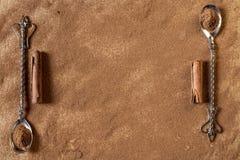 Pijpjes kaneel en poeder met ouderwetse lepels Royalty-vrije Stock Foto's