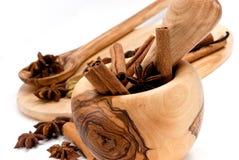 Pijpjes kaneel, Kardemom, vanilleboon en sterani Stock Foto