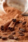 Pijpjes kaneel met Cacao Royalty-vrije Stock Fotografie