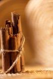 Pijpjes kaneel met een jutekoord Royalty-vrije Stock Foto's