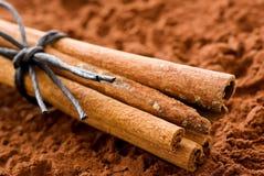 Pijpjes kaneel op Cacao Royalty-vrije Stock Afbeeldingen