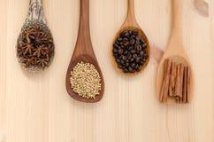 Pijpjes kaneel, steranijsplant, korianderzaad en koffiebonen  Royalty-vrije Stock Fotografie