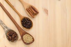 Pijpjes kaneel, steranijsplant, korianderzaad en koffiebonen  Stock Afbeeldingen