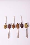 pikantność łyżki Fotografia Stock