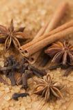 Pikantność i brown cukier Obraz Stock