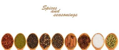 Pikantność i seasonings Zdjęcie Stock