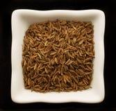 Pikantność kmin w ceramicznym pucharze. zdjęcie royalty free