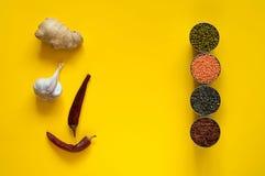 Pikantność z składnikami w metalu rzucają kulą na jaskrawym żółtym tle Kulinarny pojęcie lub, Azjatycki jedzenie fotografia royalty free