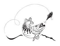 Pike e a pesca seduzem, vector a ilustração Fotos de Stock