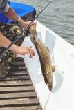 Pike a essayé de libérer le crochet du bateau Photographie stock