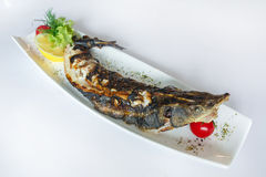 Pike fish cooked on the grill Stock Photos