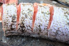 Pike fish meat for cooking Stock Images