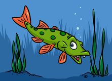 Pike fish swim river cartoon Royalty Free Stock Photos
