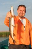 Pike in fisherman's hand Stock Images