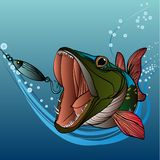 Pike fishing Royalty Free Stock Images