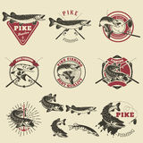 Pike Fishing Labels. Stock Images