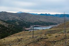 Pike National Forest damage. royalty free stock photo