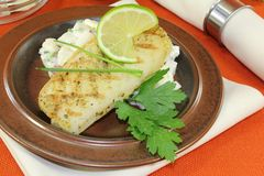 Pike with parsley Stock Photos