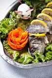 Pike perch elegant dish served Stock Images