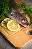 Pike perch on a kitchen board Royalty Free Stock Photo