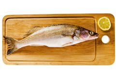 Pike perch on a wooden kitchen board Stock Images