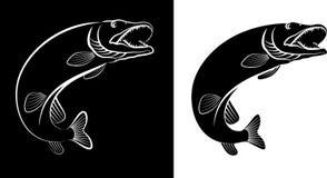 Pike. Fish - clip art illustration Royalty Free Stock Image