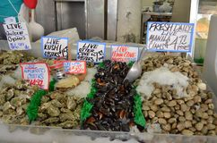 Pike Place Market clam, muscles, oysters Stock Photography