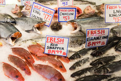 Pike Place Market. Fish Section Stock Images