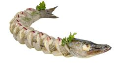 Pike on plate Royalty Free Stock Photo