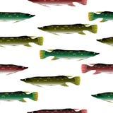 Pike seamless pattern. Stock Photo