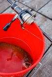 Pike, spinning rod and reel. Spinning rod and reel and pike in the red bucket Stock Photography