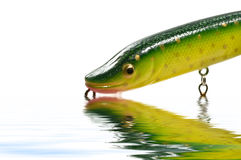 Pike wobbler Stock Image