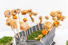 Pikes with appetizers in bucket royalty free stock photo
