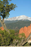 Pikes Peak from the Garden of the Gods. This is a view of Pikes Peak framed by the red rock formations of the Garden of the Gods. Pikes Peak is noted for being Stock Image
