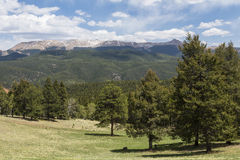 Pikes Peak Scenic Royalty Free Stock Photography