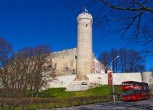 Pikk Herman, Tallinn Stockbild