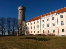 Pikk Herman torn av den Toompea kullen i Tallinn royaltyfri foto