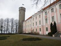 Pikk Herman wierza Toompea wzgórze w Tallinn zdjęcie stock