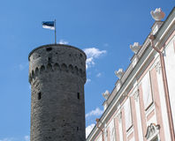 Pikk Hermann con la bandera de Estonia Fotos de archivo