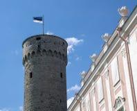 Pikk Hermann med flaggan av Estland Arkivfoton