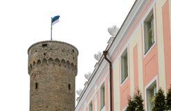 Pikk Hermann oder großer Hermann (Deutscher: Langer Hermann) ist ein Turm Lizenzfreie Stockbilder