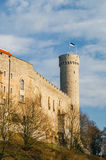Pikk Hermann or Tall Hermann tower, Tallinn, Estonia Royalty Free Stock Photos