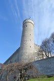Pikk Hermann tower in Tallinn. Royalty Free Stock Photography