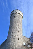 Pikk Hermann tower in Tallinn. Stock Photos