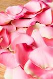 Pikn petals Stock Photo