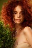Piękna czerwona kędzierzawego włosy dziewczyna Zdjęcia Royalty Free