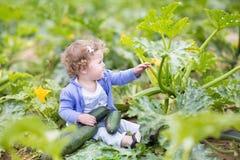 Piękna kędzierzawa dziewczynka obok zucchini rośliny Fotografia Stock